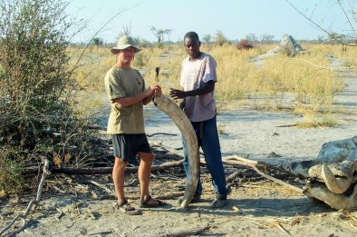 Henry Malmgren standing next to an elephant tusk in Botswana.