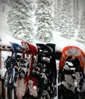 Four pairs of snowshoes hang on a rack during a snowstorm.