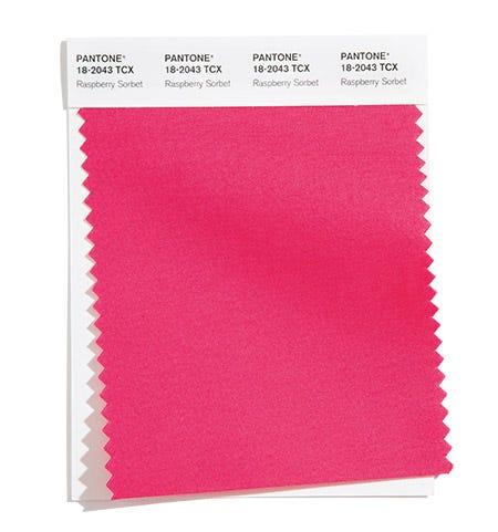 Pantone Color Swatch Raspberry Sorbet