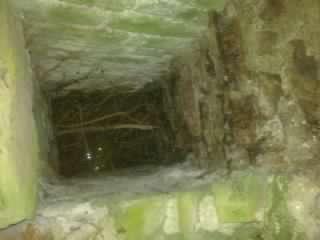 Dunbrody ruin