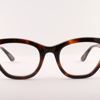 Old Focals | Leading Lady | Tortoise (02)