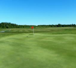 Cloverdale Links Hole 17 green - red flag