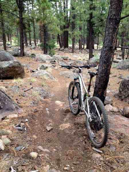 Fort Valley Trail System - Flagstaff, AZ