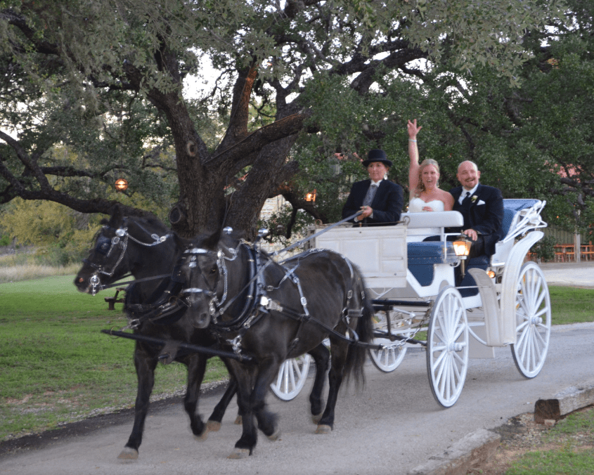 bridalcarriage-newlyengaged-oldgloryranch