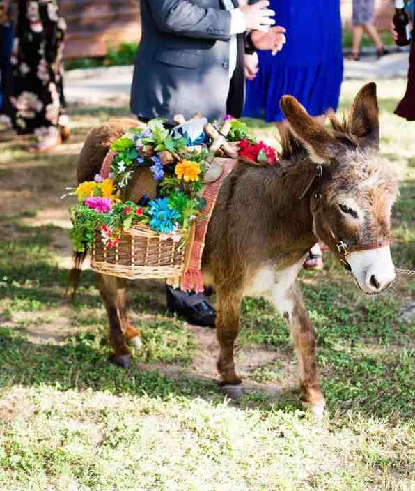 beer-burro-wedding-bartenders-austin-venue