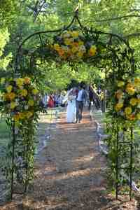 Wedding Deck Arch