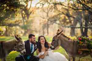 beer-burros -Old-Glory-Ranch-Wimberley-hill-country-venue-miniature-donkeys-and-and-carrie-photography