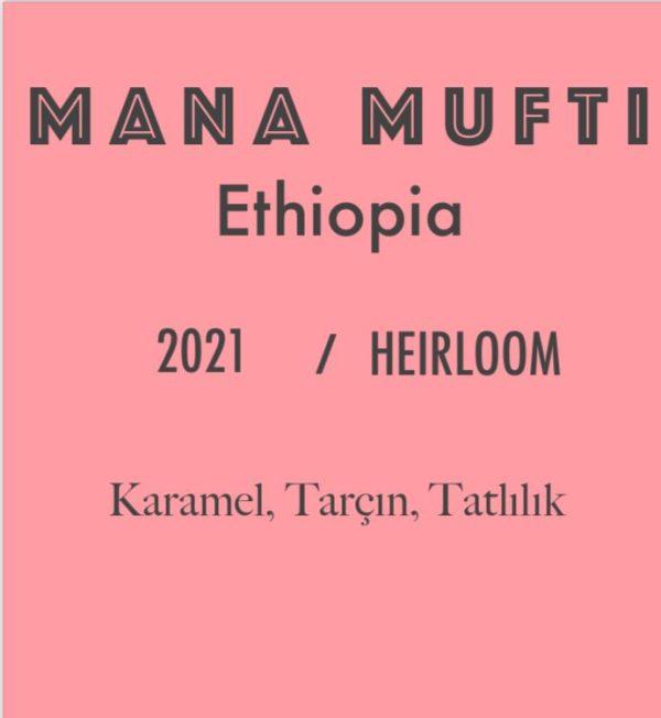 etiyopya kahve çekirdeği