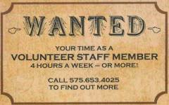 Volunteer with Friends of Lincoln