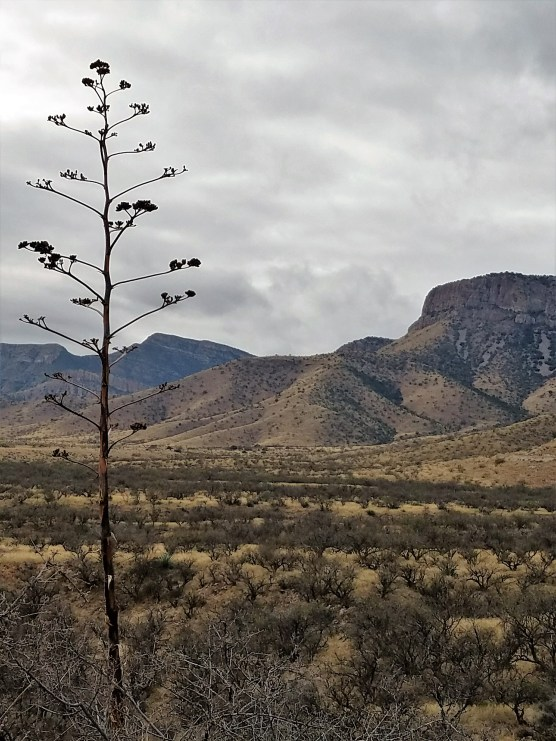 Hiking Kartchner Caverns State Park, Arizona