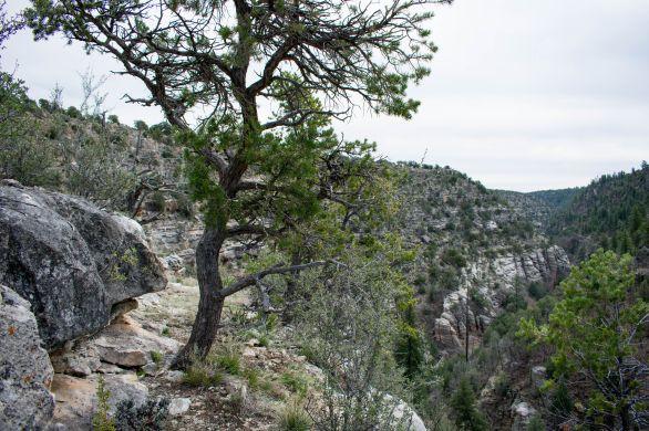 Walnut Canyon. Hiking Arizona. Flagstaff.