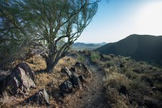 Hiking Arizona Trail Desert Phoenix