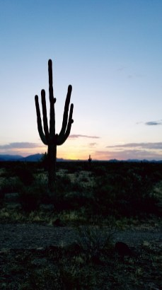 Arizona Desert Sunrise Hiking Phoenix
