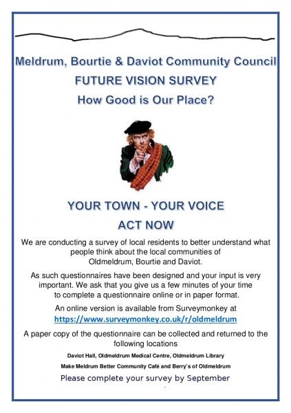 Future Vision Survey Flier