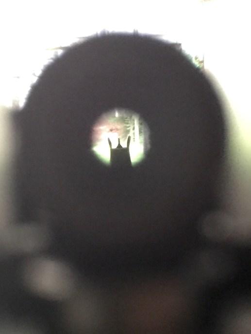 HBAR sight picture