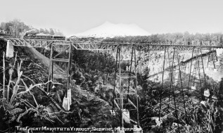 Makatote Viaduct (built 1905 - 1908) with Mt Ruapeau in the background. The viaduct is 78.6 metres high and 262 metres long.