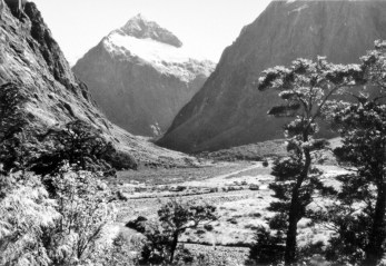 Mt Talbot