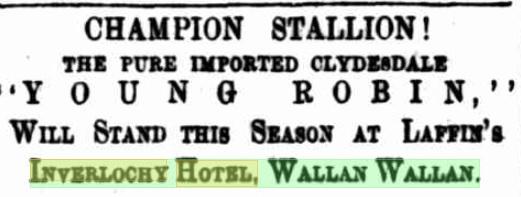 Young Robin. Kilmore Free Press - 9th October, 1876