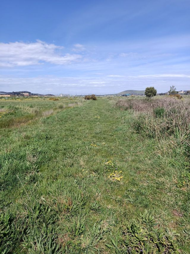 Former road leading past hangers and towards Wallan Airfield