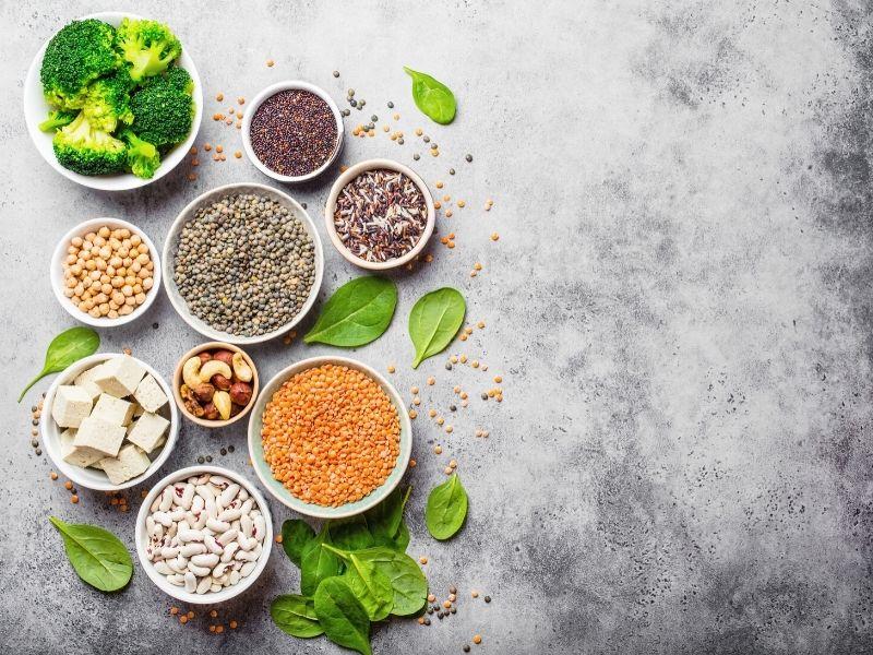 plant_protein