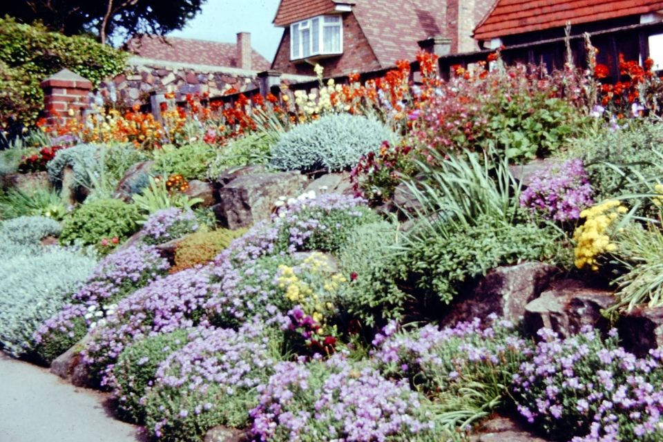 Sussex - Sussex-1964-Sleaford-Rock-Garden.jpg