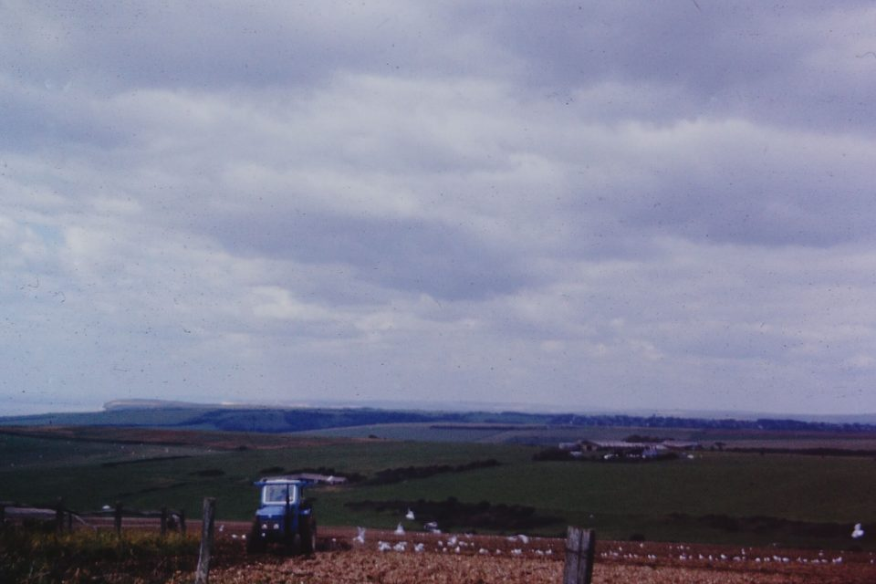 Sussex - Sussex-1974-06-Ploughing-on-Beachy-Head.jpg