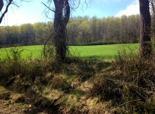 Upper Bucks County, land for sale, Pennsylvania, land with old stone ruins, abandoned stone farmhouse, old stone houses
