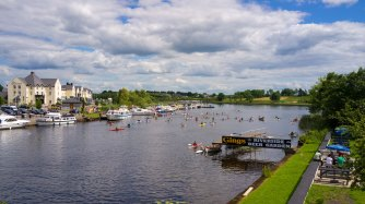 Carrick on Shannon Ireland Irish country cottage, old stone homes for sale, old stone houses, historic properties