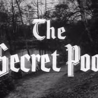 Robin Hood 063 - The Secret Pool