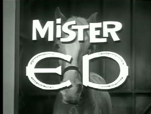 Mister Ed - Ed the Beneficiary