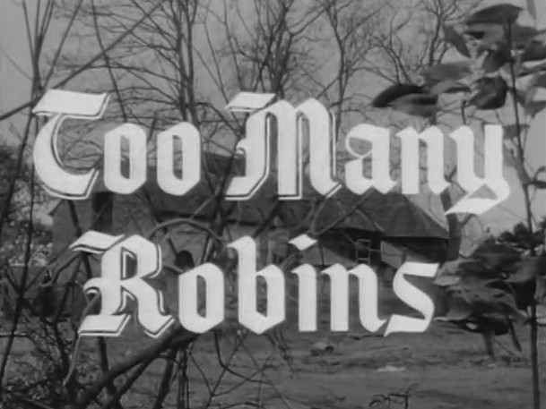Robin Hood 099 - Too Many Robins