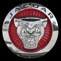 Logo Jaguar F-Type auf Kühlergrill