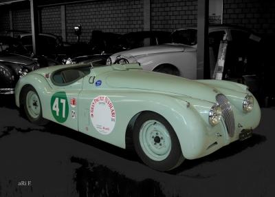 Jaguar XK 120 Roadster for racing 02 Poster