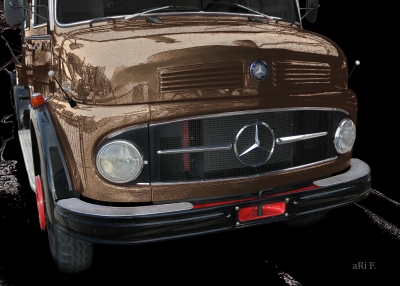 Mercedes-Benz Typ 1113 Kurzhauber in brown