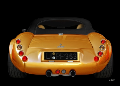 Wiesmann Roadster MF3 Poster in gold