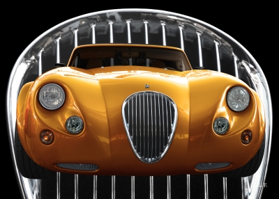 Wiesmann Roadster MF3 Poster in gold color
