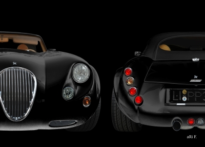 Wiesmann Roadster MF3 Poster in black & black
