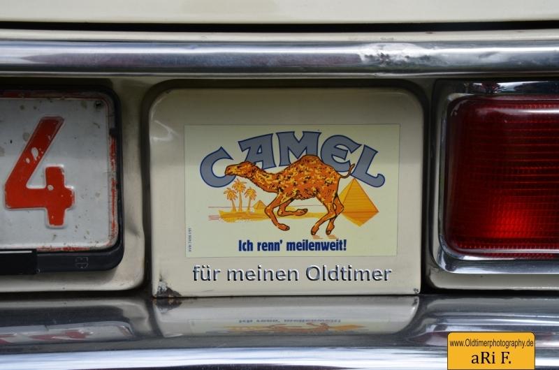 Camel Werbung als Autoaufkleber