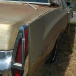 Cadillac Heckansicht