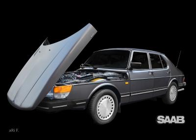 Saab 900 Limousine Schweden Steilschnauzer