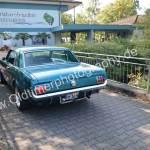 Ford Mustang 1 Heckansicht
