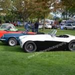 Austin-Healey 100M in schwarz-weißer Lackierung beim Oldtimertreffen