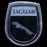 Logo Jaguar auf Radio- und Temperatur-Blende