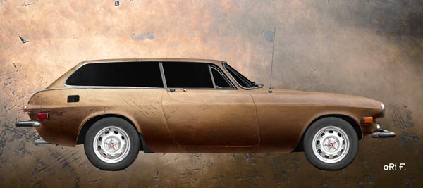 Volvo P1800 ES Psoter in antique copper