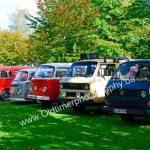 VW Bus-Fraktion jeden Alters in Reih und Glied