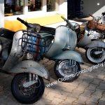 Vespa Roller aller Jahrgänge inReih & Glied