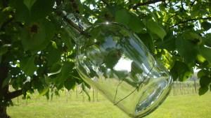 Exploring VA Wines-Pear pics 436