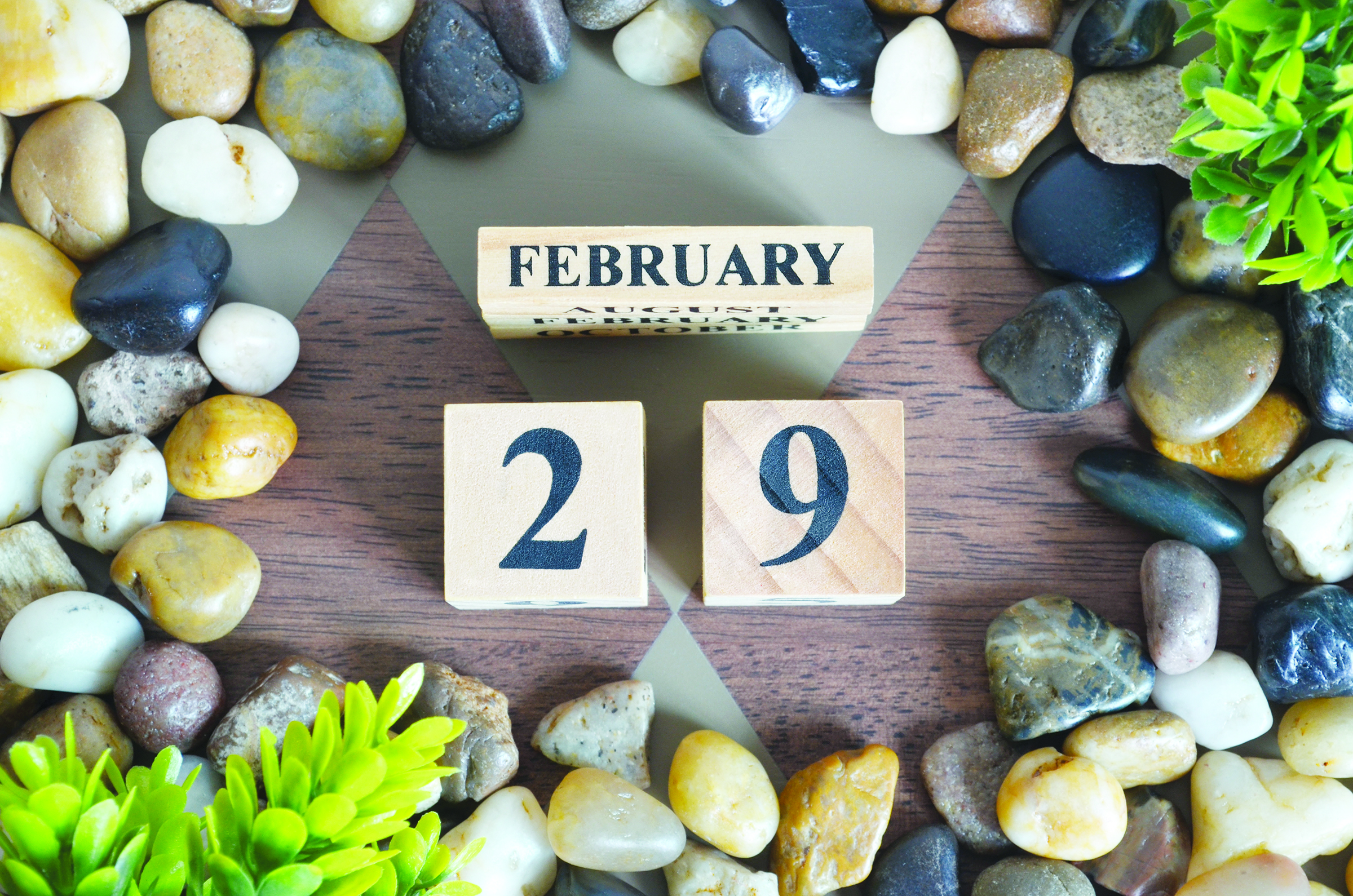 Leap Year 2020 – Pause. Reflect. Reset.