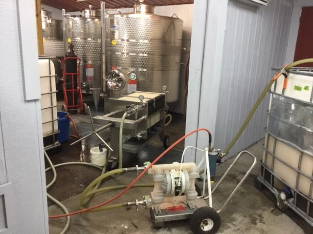 Defining the Art of Winemaking