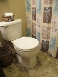 A new toilet and showercurtain.